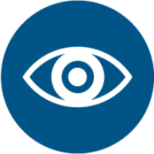 Government Surveillance Icon